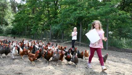 Tagesfahrt Kinderbauernhof Gussow